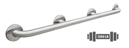 Bradley-Bariatric-Grab-Bar